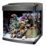Cool Fish Tanks & Aquariums